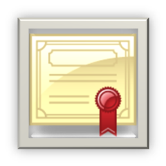 https certificate icon